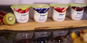 Daiya's new Greek Yogurt Alternative now available in  Peach, Strawberry, Black Cherry, and Blueberry (PRNewsFoto/Daiya Foods)