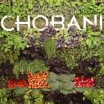 Chobani Explores The Savory Side of Yogurt with Meze Dips