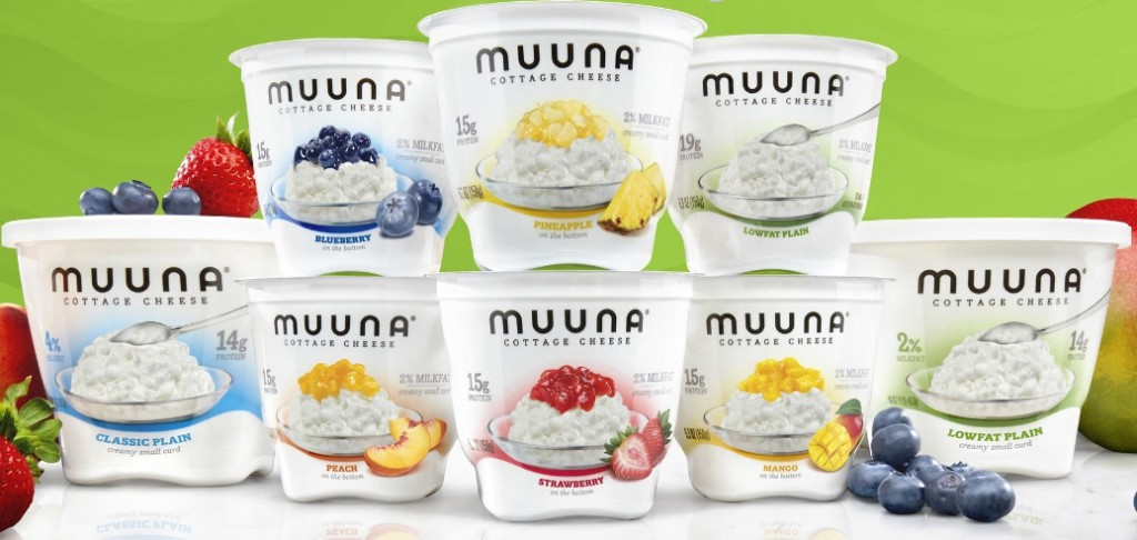 Wonderful ... How To Approach The U.S. Market For Years, Muuna CEO Gerard Meyer Told  Project NOSH, And After Much Research Decided To Take On The Cottage Cheese  Set.