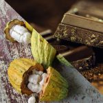 From Bean to Bar: The Debate Over Raw Chocolate Heats Up