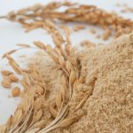 RiceBran Technologies Showcases Full Line of Organic Rice Bran Products