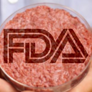 The Checkout: FDA to Hold Meeting About Cultured Food Products