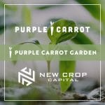 New Crop Capital, Purple Carrot Partner to Fund & Grow Early Stage Brands