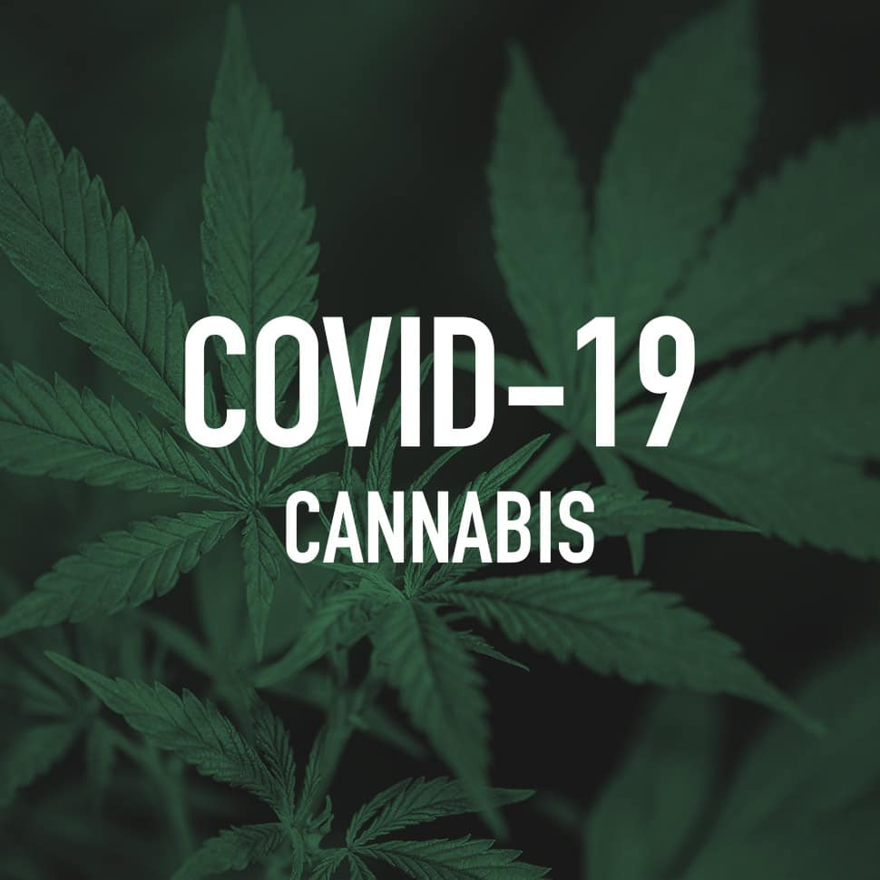 Cannabis, CBD Brands Feel Impact of COVID-19