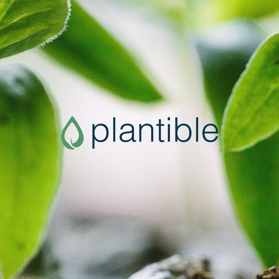 Plantible Raises $4.6M to Scale Plant Protein