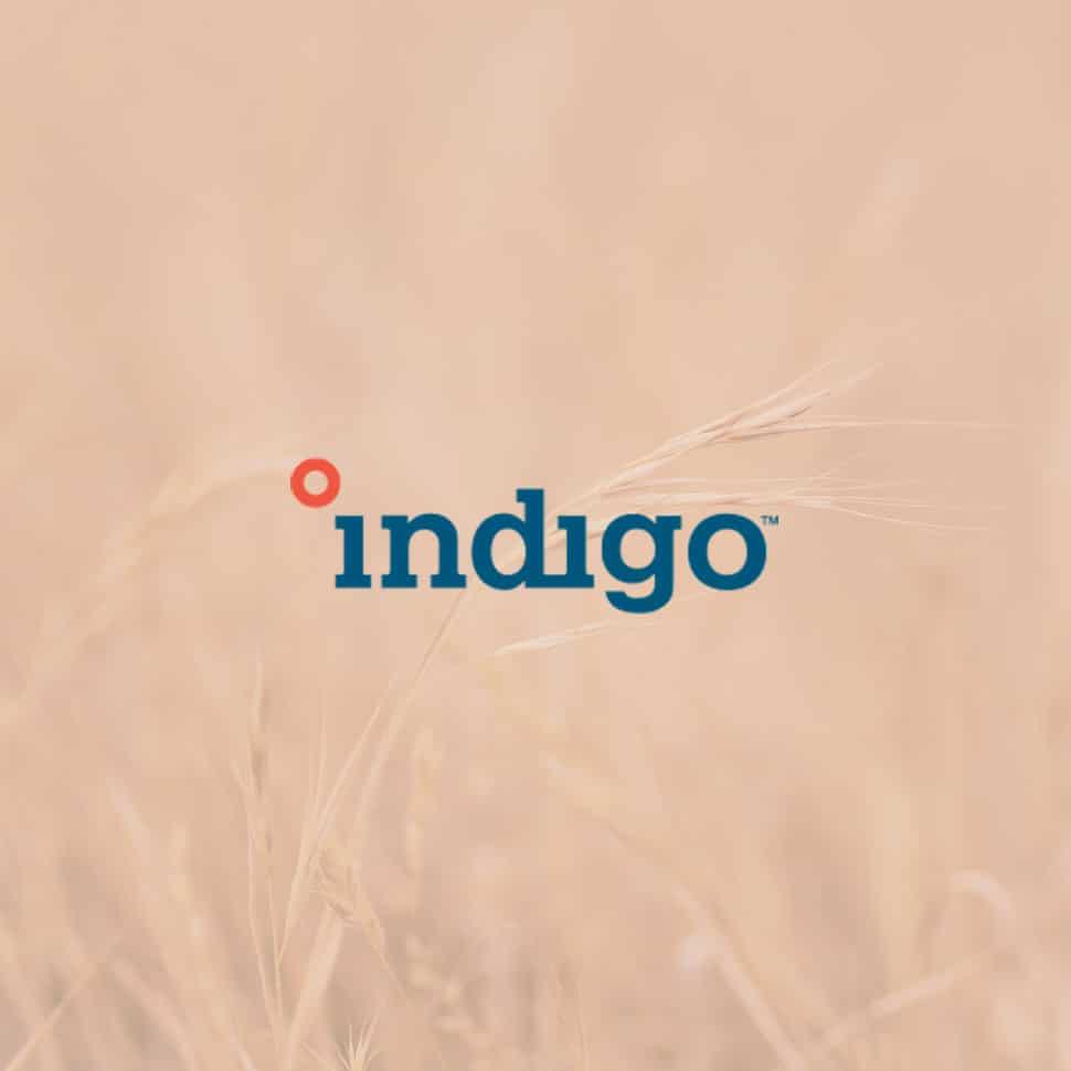 The Checkout: Indigo Ag Raises $360M, GoMacro Powers its Community