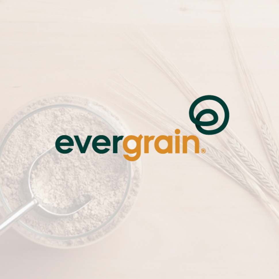 EverGrain Gives Spent Grain a Second Life as Plant-Based Barley Protein Ingredient