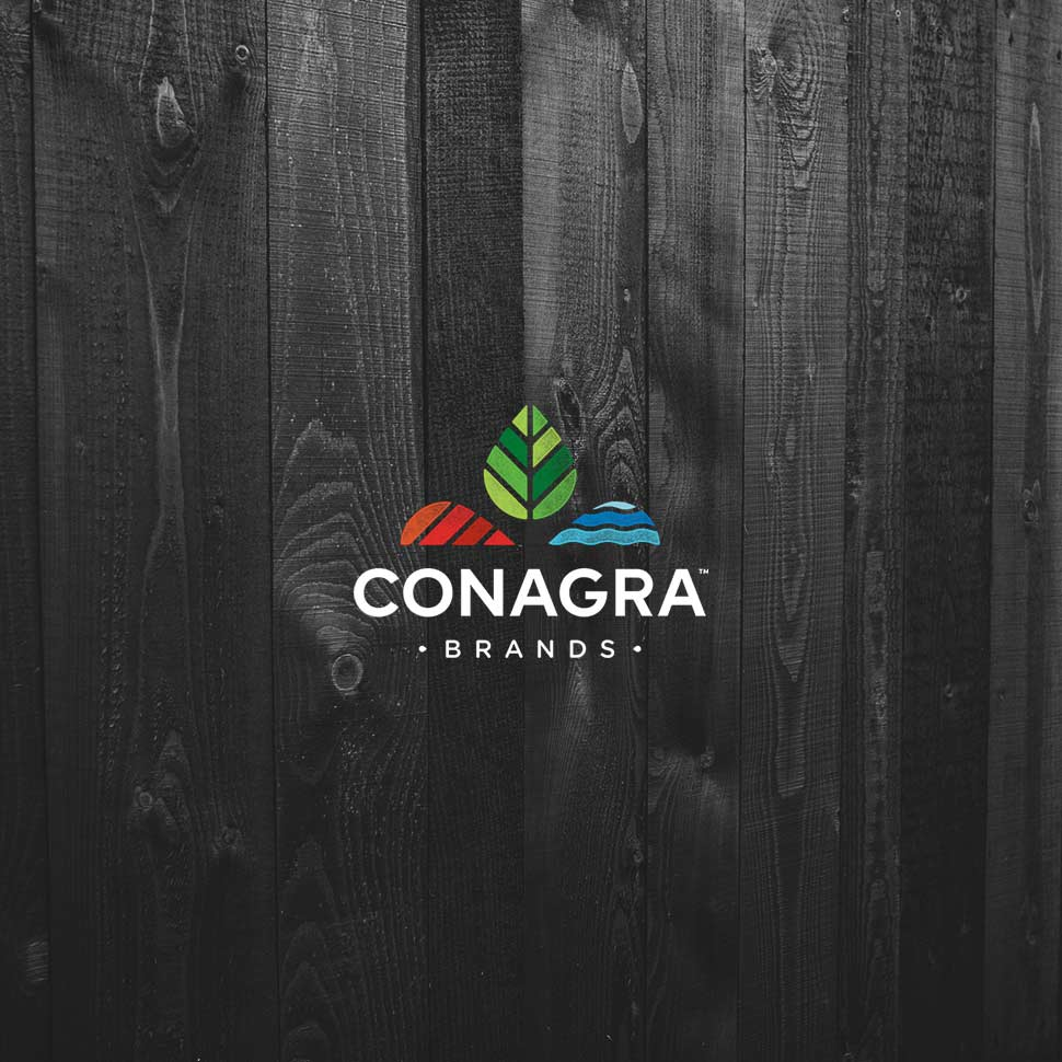 Conagra Talks Price Increases, 'Premiumizing' Portfolio on Earnings Call
